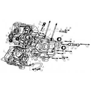 Hammerhead 250SS (Super Sport) Crankcase Assembly