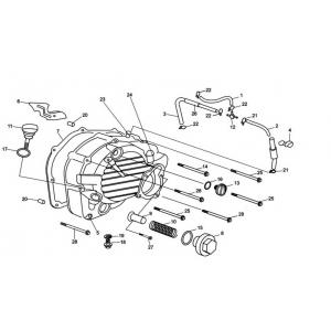 Hammerhead 250cc - Right Side Cover Assembly
